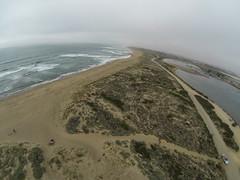 Seal Time (Wind Watcher) Tags: windwatcher kite dopero bkt kap elkhorn slough california kapica2016