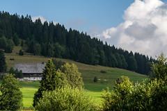 DSC_8781 (andreas_rothmund) Tags: schluchsee schwarzwald badenwrttemberg deutschland de