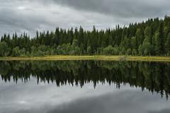 Liatjnna lake (Helena Normark) Tags: lake reflection liatjnna mosvik nordtrndelag norway norge sonyalpha7 a7 voigtlnder cv5015 nokton5015 nokton50mmf15