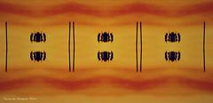 codificado (ojoadicto) Tags: abstract abstracto espacial geometria geometry patron pattern formas forms digitalmanipulation artisticphotography manipulaciondefotos