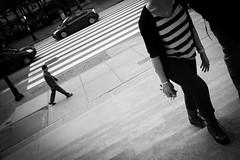 . ([ chang ]) Tags: wwwriccardoromanocom stripe zebra striscepedonali walk camminare bw bn blanco negro bianco nero black white byn blackandwhite people person persona gente persone street shot streetshot car macchina macchine