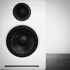 Speaker (260/366) (garrettc) Tags: music speaker home bw 366 365