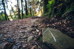 004 (Edinman ) Tags:       trail hiking