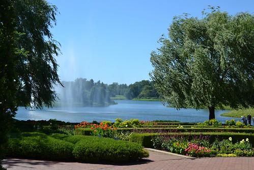 Thumbnail from Chicago Botanic Garden