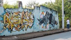 _DSC5971 (Mario C Bucci) Tags: saida fotografia pacheco paulo tellis mario bucci hugo shiraga fabio sideny roland grafites volu ii
