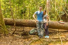Sumatra 16-41 (JD_Rocks) Tags: sumatra laketoba medan indonesia volcaniclake rainforest orangutan bukitlawang batak gunungleusernationalpark