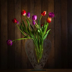 tulipes-r (berfre35) Tags: naturemorte tulipes