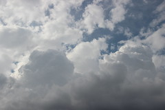 Tu vois, c'est de la crme comme dans les choux (Mademoiselle N) Tags: nature nuage cloud sky ciel weather temps cream