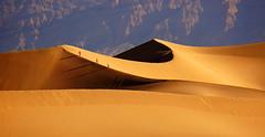 ~~~ (jolanta mazur) Tags: desert sand dunes deathvalley california people walking vastness enormity curve