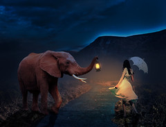 journey (seanfderry-studenna) Tags: fantasy girl elefant road journey surrealism surreal animal concept art background creation cloud poetic unique grass elegant surrealistic texture invention cover colorful imagination artistic conceptual imaginative collage elephant uniqueness abstract creativity grungy sky beautiful mountain parasole umbrella night light