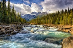 Go with the Flow (Philip Kuntz) Tags: alberta rivers gettyimages peytolake icefieldsparkway mistayacan
