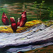 """Black Pond Pitcher Plants ,"" Artist: Cat Micheels, Saranac Lake, NY"