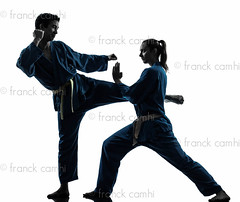 karate vietvodao martial arts man woman couple silhouette (Franck Camhi) Tags: shadow 2 two people woman white man male sports girl silhouette female cutout pose asian person one 1 vietnamese exercise fulllength young couples martialarts indoors karate whitebackground kungfu uniforms studioshot posture fighting facetoface adults selfdefense kicking twopeople defense isolated position caucasian fightingstance exercising vietvodao combativesport