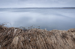 By the Water (Kristin Sig) Tags: lake water apavatn slided
