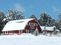 Red Barn (Sandra Leidholdt) Tags: usa snow mountains cold fence buildings us spring colorado barns fences april rockymountains redbarn blowingsnow whitefence springtime snowcovered redbarns hff jeffersoncounty springtimeintherockies sandraleidholdt
