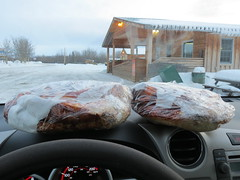 Cinnamon buns on dashboard of the Jimbobmobile (jimbob_malone) Tags: yukon 2013 northklondikehighway