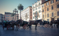 Horses near the Spanish Steps (jpitha) Tags: horses italy rome roman sunny palmtrees