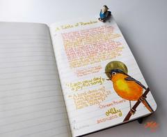 My Bird Diary (Milagritos9) Tags: moleskine handmade sketchbook visualjournal dibujo watercolours pjaro moleskineart moleskinerie pajaritos birdportrait mily artistjournal robinbird visualdiary milagritos birdillustration illustratedjournal moleskinejournals moleskineproject birdangel birdquotes artmoleskine moleskinedrawing birdjournal inspirationaljournal milycha diarioilustrado pjaroillustracin spiritualjournal robindrawing agendailustrada moleskineartpages moleskinewatercolours moleskinehandmade cuadernoillustrado birddiary2013 birdmoleskin frasescitasdeaves