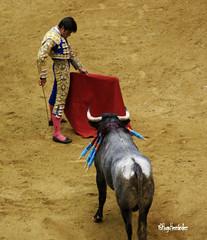 Fermin Rivera (HugoHernandez1) Tags: mxico toros padilla sanluispotosi eldomo pablohermosodemendoza ferminrivera torosensanluispotosi