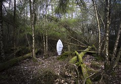 Hibernation (Robyn_Banning) Tags: escape theend hibernation thebeginning deepinthewoods