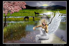 Angelus (ADRIANO ART FOR PASSION) Tags: primavera photoshop alba natura angelo violino photoshopcreativo ringexcellence