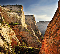 Hiking the Overlook Trail in Zion 2013 (houstonryan) Tags: park print landscape photography landscapes utah sandstone photographer desert ryan may houston southern trail national photograph stunning 24 zion redrock overlook zone riparian 2013 houstonryan