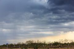 _MG_0780 (eit1mx) Tags: storm color rain méxico mexico lluvia yucatan yucatán merida hdr mérida