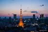 DSC08861 ([kam]) Tags: nightphotography sunset japan tokyo spring tokyotower 2013