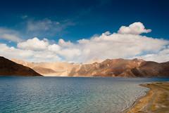 Pangong Tso (teja...) Tags: india lake water fresh tso leh ladakh pangong teja