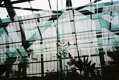 winter gardens (whistle.and.run) Tags: sheffield film analog filmphotography filmcamera filmgrain minolta minoltaafz afz analogue an analogphotography analoguephotography 35mm 35mmfilm 35mmphotography 35mmcamera 35mmcolorfilm 35mmcolourfilm reflection reflections abstract surreal yorshire southyorkshire england uk britain blue black white grey gray window lines sheff wintergardens