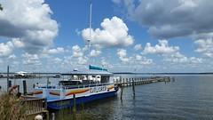 Cetacean Cruises - Orange Beach, AL_20160719_113853 (Wampa-One) Tags: cetaceancruises orangebeachal alabama boat explorer wolfbay pontoon dolphinandnaturecruise dolphinnaturecruise