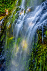Proxy Falls, Oregon (Rod Heywood) Tags: waterfalls water spray wet refreshing summer oregon cascades mckenzieriver mckenziehighway photogenic scenic moss mossy rejoicing hiking hiker green shade sunlight afternoon