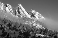 Cold Fog at Sunrise (courtney_meier) Tags: snow snowscape snowypines snowstorm forest ponderosapine pinusponderosa flatirons boulder boulderopenspace colorado coloradorockies