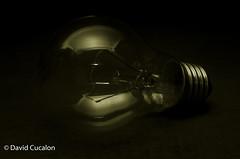 Light in darkness (David Cucaln) Tags: davidcucalon cucalon bombilla buld macro stilllife lowkey clavebaja fineartphotography bodegon naturalezamuerta retro