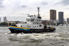 Texelbank (R. Engelsman) Tags: texelbank tug ship vessel imo 9060699 outdoor vehicle boat wereldhavendagen rotterdam 010 netherlands nl show event sleepboot