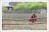 K8873.0110.Tà Số.Mộc Châu.Sơn La (hoanglongphoto) Tags: asia asian vietnam northvietnam northwestvietnam outdoor life people dailylife children hmongchildren girl hmonggirl lifeatmountainsvietnam lifeatmountainousvietnam tâybắc ngoàitrời người cuộcsống đờithường trẻem bégái trẻemhmông bégáihmông cuộcsốngvùngcao sơnla mộcchâu tàsố gettyimages