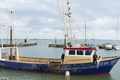 Volendam - Retour de pche (larsen & co) Tags: paysbas hollande holland hollandeseptentrionale netherlands volendam edamvolendam pche pcheenmer anguilles chalutier