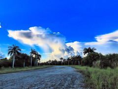 Virga to south HDR 20160818 (Kenneth Cole Schneider) Tags: florida miramar westbrowardwca
