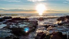 P1140556 (Pursuedbybear) Tags: alexandraheadland sunshinecoast beach sunrise