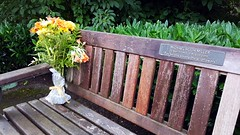 Memorial Bench remembered (wjis21) Tags: finnerty uvic universityofvictoria oakbay saanich victoriabc walk mountain hike galaxynote5 finnertygardens flowers floral climb cardio exercise interfaith chapel