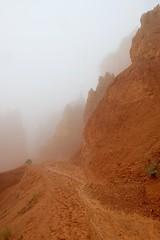 IMG_2841 (Geology Joel) Tags: fog hoodoos brycecanyon bryceamphitheater geology rocks nature nationalparks utah desert weather unique hike trails rain