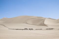 IMG_6729 (chungkwan) Tags: china chinese gansu province weather dry sands canon canonphotos travel world nature landmark landscape   dunhuang  crescent crescentlake  mingsha mingshamountain  camels silkroad