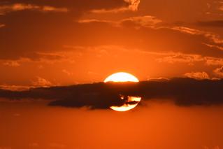 Shy Sun ...