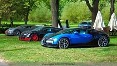 Trio Bugatti Veyron (MANETTINO60) Tags: bugatti veyron chantilly hypercar supercar voiture car 1001hp hp power molsheim supersport cabriolet wre vitesse sang noir carbone w16 w12 nikon d3000 arts art elegance richardmille richard mille exotics