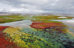 Colours by Manu- Hveravellir - Iceland (Ste Cube) Tags: hveravellir oasi iceland islanda pistakjolur kjolur stecube geotermic colours colour clouds nuvole