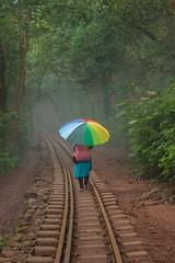 Matheran-4859 (Satish Chelluri) Tags: satishchelluri satishchelluriphotography matheran maharastra umbrella mansoon