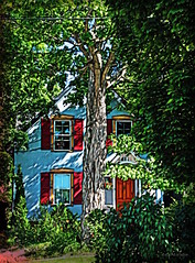 """another """"why I love my neighbourhood"""" pic (eepeirson - slow) Tags: guelph ontario canada historic indiginous guelfi hanover georgeiv speedriver eramosariver txeeptopaz victorian"""
