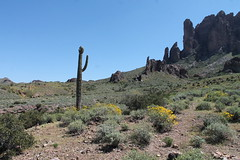 The beginning of the Superstition Mountains (outdoorpict) Tags: park flowers cactus rocks desert bluesky vista peaks