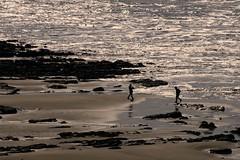 Widemouth Bay (g austin) Tags: delete10 delete9 delete5 delete2 delete6 delete7 delete8 delete3 delete delete4 save save2