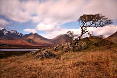 Loch Slapin Tree (Andy Watson1) Tags: uk travel light sky holiday snow mountains west tree skye water grass clouds canon landscape island march scotland spring movement scenery rocks long exposure isleofskye britain branches united great scenic scottish sigma kingdom british loch withered bla isle twisted glas cuillin torrin bheinn slapin clach snowcaped of 450d